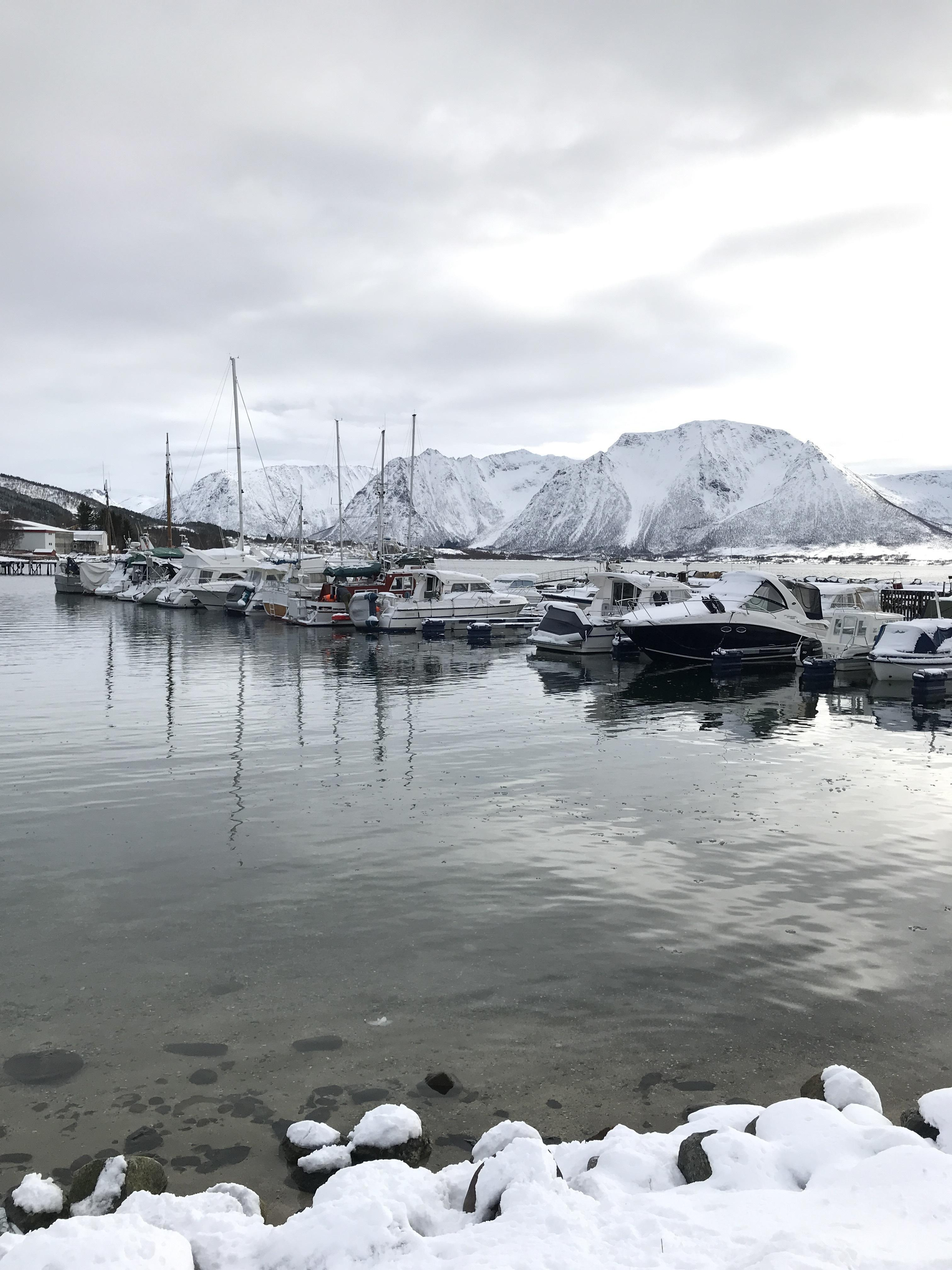 https://www.marinasolutions.no/uploads/201904-Maurnes-båtforening-4.JPG