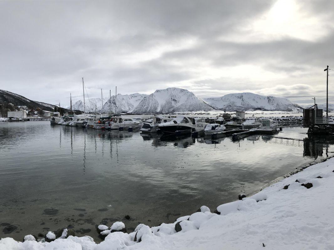 https://www.marinasolutions.no/uploads/201904-Maurnes-båtforening-7.JPG