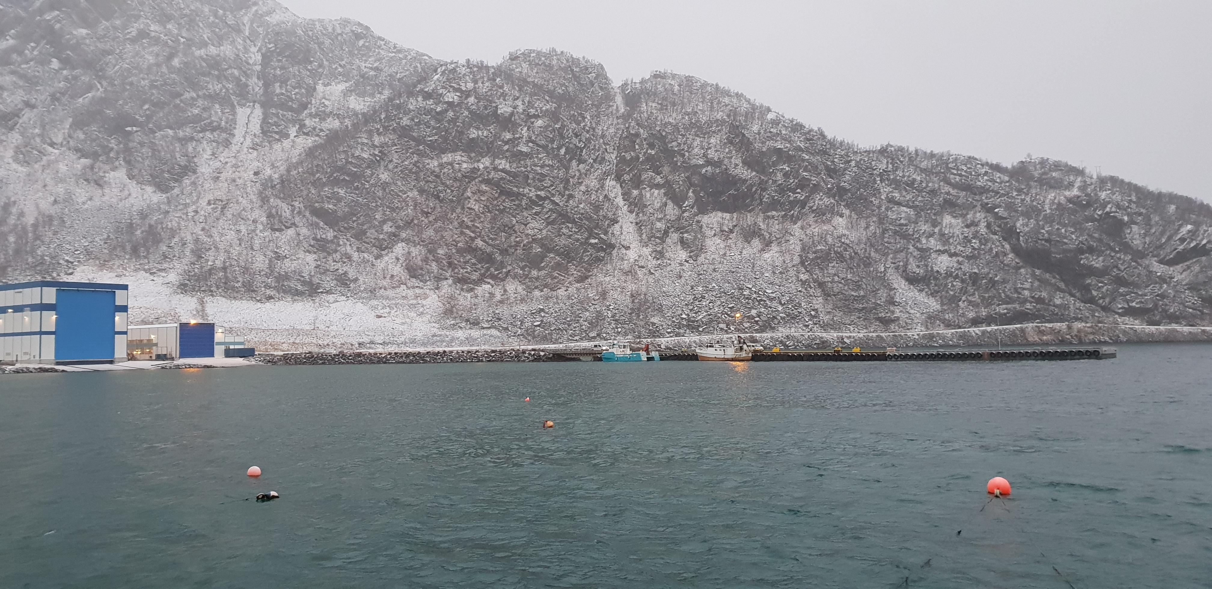 https://www.marinasolutions.no/uploads/Loppa-kommune-Øksfjord-russebrygge-marina-solutions-foto-av-Frydenbø.jpg