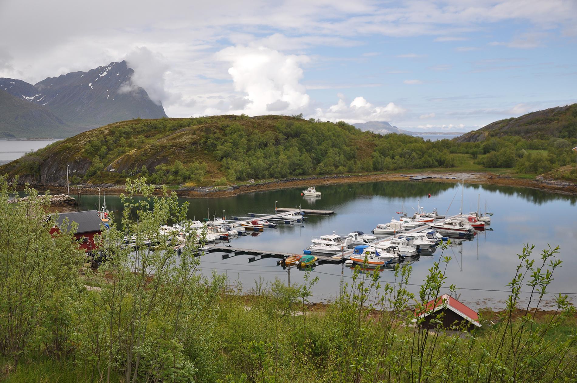 https://marinasolutions.no/uploads/Tjongsfjord003.jpg